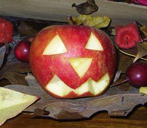Wat Zeg Je Met Halloween.De Grote Cavia Website Halloween